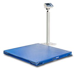 Permanent and Portable Floor Scales